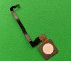 Сканер отпечатка Google Pixel 3 Not Pink