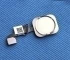 Кнопка Home Apple iPhone 6 Plus белая с серебром