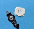 Кнопка меню шлейф + накладка Apple iPhone 5 белая
